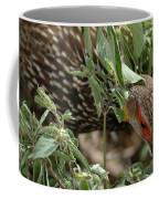 Yellow-necked Spurfowl Coffee Mug