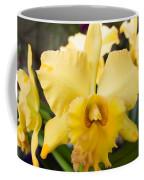 Yellow Orchids Coffee Mug