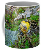Yellow Patches Baby Mushroom - Amanita Muscaria Coffee Mug