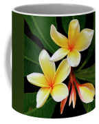 Yellow Plumeria Coffee Mug by Ben and Raisa Gertsberg