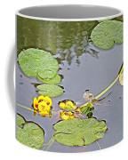 Yellow Pond Lilies On Lake Yellowhead Along Yellowhead Highway-b Coffee Mug