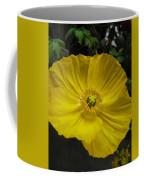 Yellow Poppie Coffee Mug