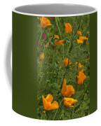 Yellow Poppies Dsc07460 Coffee Mug