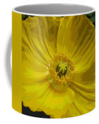 Yellow Poppy Flower Coffee Mug