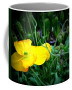 Yellow Poppy Xl Format Floral Photography Coffee Mug