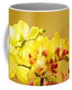 Yellow Red Orchid Flowers Art Prints Orchids Coffee Mug