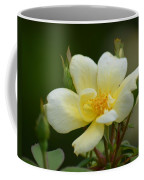 Yellow Rose 2013a Coffee Mug