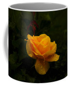 Yellow Rose Dapples With Waterdfrops Coffee Mug