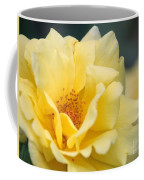 Yellow Rose Macro Coffee Mug