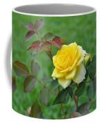Yellow Roses Coffee Mug