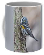 Yellow-rump Warbler Coffee Mug