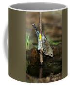 Yellow-rumped Warbler Drinking Coffee Mug