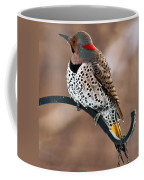 Yellow-shafted Northern Flicker Coffee Mug