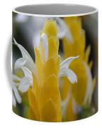 Yellow Shrimp Swirl Coffee Mug