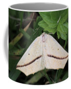 Yellow Slant-line Moth Coffee Mug