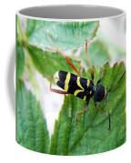 Yellow Stripped Beetle Coffee Mug