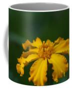 Yellow Sun Burst...   # Coffee Mug