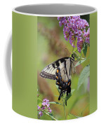 Yellow Swallowtail Butterfly Taking A Drink Coffee Mug