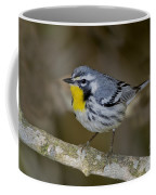 Yellow-throated Warbler Coffee Mug