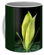 Yellow Trillium Coffee Mug