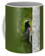 Yellow-tufted Woodpecker Coffee Mug