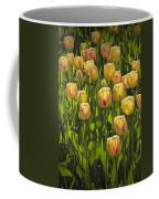 Yellow Tulip Flowers On Windmill Island In Holland Michigan Coffee Mug