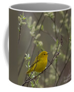 Yellow Warbler -1 Coffee Mug