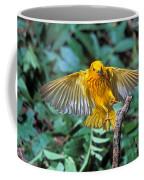Yellow Warbler Dendroica Petechia Coffee Mug
