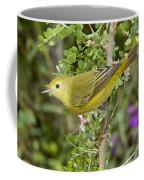 Yellow Warbler Hen Coffee Mug