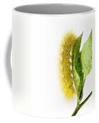 Yellow Wooly Bear Coffee Mug