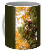 Taxus Baccata Or Yew Red Fruits On Twig  Coffee Mug