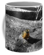 Young Bird Exploring Coffee Mug