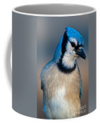 You Are All Wondering Why I Called This Meeting.. Coffee Mug