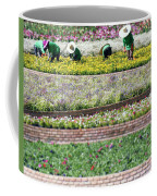 You Reap What You Sow Coffee Mug