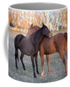 You Scratch My Back And I'll Scratch Yours Coffee Mug