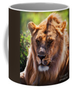 Young Adult Male Lion Portrait. Safari In Serengeti Coffee Mug