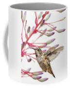 Young Allen's Hummingbird Coffee Mug