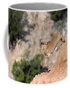 Young Auodad Sheep Descending The Canyon Coffee Mug