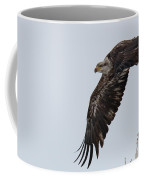 Young Bald Eagle Launches Into The Air Coffee Mug