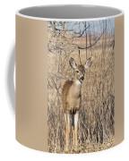 Young Black-tailed Deer Coffee Mug