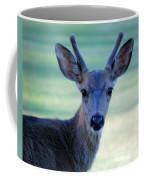 Young Buck Coffee Mug