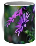 Young Daisies Coffee Mug