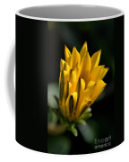 Young Daisy Coffee Mug