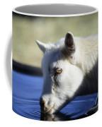 Young Goat Coffee Mug