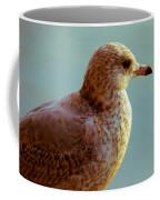Young Gull Coffee Mug