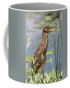 Young Heron Coffee Mug