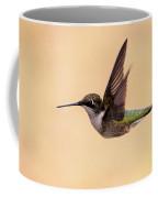 Young Hummingbird - Sailor Coffee Mug