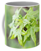 Young Leaves Coffee Mug