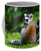 Young Lemur Coffee Mug