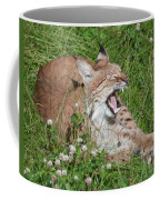 Young Lynx Yawning Coffee Mug